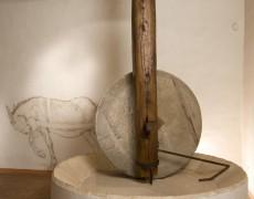 4. MOO Museo dell'Olivo e dell'Olio – Fondazione Lungarotti – Frantoio a trazione animale