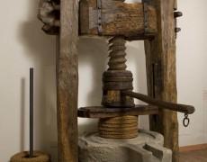 5. MOO Museo dell'Olivo e dell'Olio – Fondazione Lungarotti – Pressa per olio